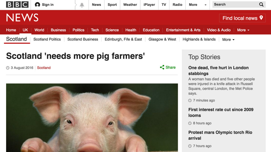 Scotland 'needs more pig farmers'